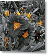 Havens Of Nectar Metal Print