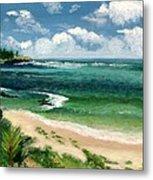 Hawaii Beach Metal Print