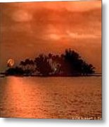Hawaiiana 10 Metal Print