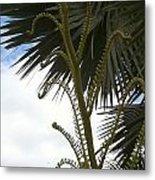Hawaiiana 18 Metal Print