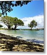 Hawaiian Landscape 1 Metal Print