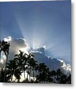 Hawaiian Landscape 16 Metal Print