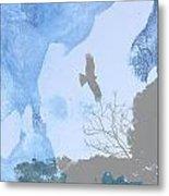 Hawk In Flight 1 Metal Print
