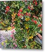 Hawthorn Berry Metal Print