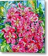 Hawthorn Blossom Metal Print