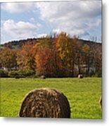 Hay Bale In Country Field Metal Print