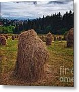 Hay In Stacks In Tatra Mountains Poland Metal Print