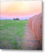 Hay There Metal Print