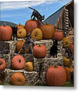 Haycats N' Pumpkins Metal Print