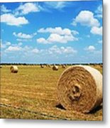 Hayfield Metal Print by Venus