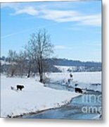 Hays Creek Winter Metal Print
