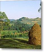 Haystack At The Hillside, Transylvania Metal Print