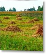 Haystacks In Field Metal Print