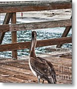 hd 392 hdr - Pelican On The Pier Metal Print