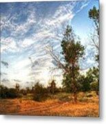 Hdr Landscape Metal Print