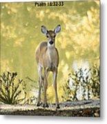 He Makes My Feet Like The Feet Of Deer Metal Print by Kathy Clark