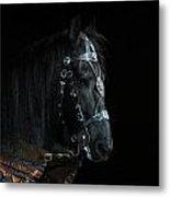 Head Of An Equine Warrior Metal Print