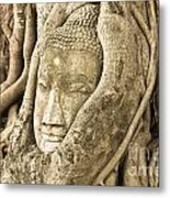 Head Of Buddha Ayutthaya Thailand Metal Print by Colin and Linda McKie
