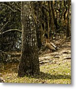 Headed For The River Metal Print