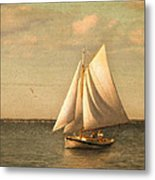 Heading In Metal Print by Michael Petrizzo