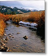 Headwaters Of The River Of No Return Metal Print