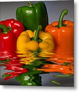 Healthy Reflections Metal Print by Shane Bechler
