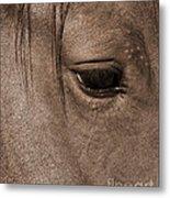 Heart Of A Horse Metal Print