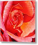 Heart Of The Rose #1 Metal Print