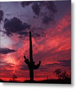 Heart Of The Sunset Metal Print