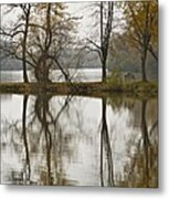 Heart Reflection Metal Print