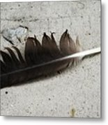 Heart Rock And Feather Metal Print