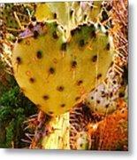 Heart Shaped Cactus Metal Print