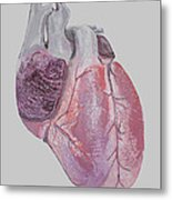 Heart Metal Print by Terence Leano