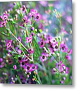 Heather Metal Print