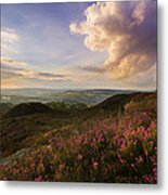 Heather Sunset Metal Print