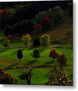 Heaven Below Tiny Trees Metal Print