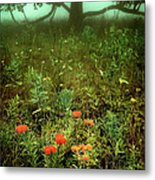 Heaven In The Gloom I - Blue Ridge Parkway Metal Print by Dan Carmichael
