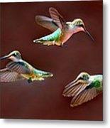 Heavenly Birds Metal Print