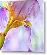 Heavenly Iris 2 Metal Print by Theresa Tahara