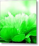 Heavenly Peony Green Metal Print