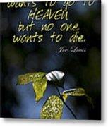 Heaven's Light Metal Print