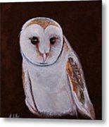 Henry The Owl Metal Print