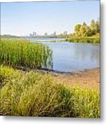 Herbs And Reeds Close To The River Metal Print