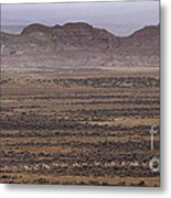 Herd Of Antelope   #8573 Metal Print