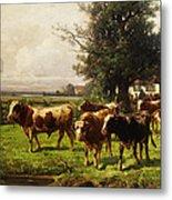 Herd Of Cows Metal Print