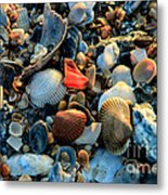 Here A Shell There A Shell Metal Print