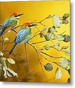 Here Comes The Sun - Rainbow Bee-eaters Metal Print