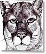 Here Kitty Kitty Metal Print by Janet Moss