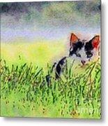 Here Kitty Kitty Kitty Metal Print