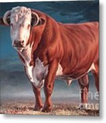 Hereford Bull Metal Print